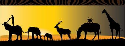 Animales africanos ilustración del vector