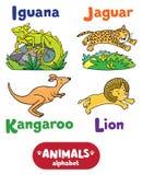 Animales alfabeto o ABC Imagenes de archivo