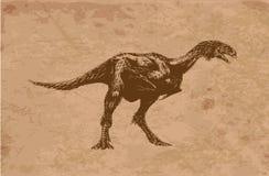 Animales antiguos Fotografía de archivo libre de regalías