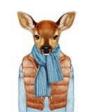 Animales como ser humano El cervatillo en abajo concede, suéter y bufanda libre illustration