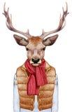 Animales como ser humano El retrato de ciervos en abajo concede, suéter y bufanda Fotografía de archivo
