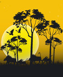 Animales de África libre illustration