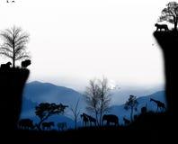 Animales de la buena tarde de África Imagen de archivo libre de regalías
