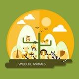 Animales de la fauna Imagen de archivo