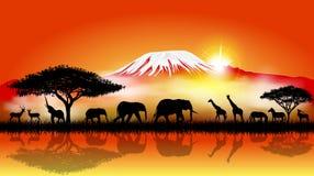 Animales de la sabana en el fondo del monte Kilimanjaro