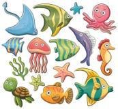 Animales de mar Fotografía de archivo