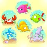 Animales de mar divertidos Imagen de archivo libre de regalías