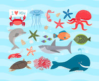 Animales de mar lindos del vector Delfín y ballena Fotografía de archivo libre de regalías