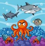 Animales de mar que viven debajo del océano ilustración del vector