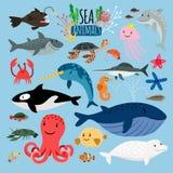 Animales de mar Vector a las criaturas y los pescados animales subacuáticos en el mar, los peces espadas y langoustine, tortuga d ilustración del vector