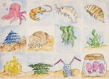 Animales de mar y quelpo, coral, alga marina Imágenes de archivo libres de regalías
