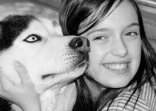 Animales del amor Imagen de archivo