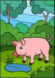 Animales del campo de la historieta para los niños Pequeño cerdo lindo Imagen de archivo