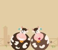 Animales del campo: dos vacas felices Fotos de archivo libres de regalías