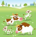 Animales del campo en el vector fijado: vacas Imagenes de archivo