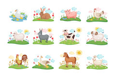 Animales del campo fijados