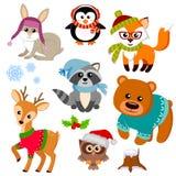 Animales del invierno en el suéter, sombrero, bufanda, vidrios Fox, oso, raccon, ciervos, búho, conejo y pingüino libre illustration