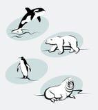 Animales del norte Imagenes de archivo