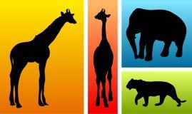 Animales del safari/del parque zoológico libre illustration