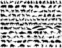 Animales del vector Imágenes de archivo libres de regalías