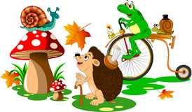 Animales divertidos Fotografía de archivo libre de regalías