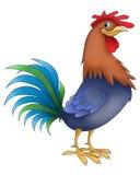 Animales divertidos del gallo Fotografía de archivo