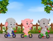 Animales divertidos que completan un ciclo en el camino ilustración del vector