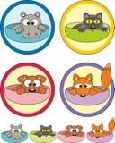 Animales domésticos de la historieta en las etiquetas engomadas de las tazas (escrituras de la etiqueta) Fotografía de archivo libre de regalías