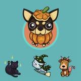 Animales domésticos en Halloween Imagenes de archivo
