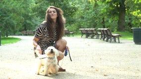 Animales domésticos felices y sonrisa de la caricia del dueño del perro que miran la cámara metrajes
