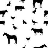 Animales domésticos inconsútiles del modelo del ejemplo del vector Fotos de archivo