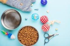 Animales domésticos y animales lindos, animales domésticos, gatos lindos, comida y accesorios para la vida del gato, endecha plan fotografía de archivo