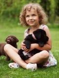 Animales domésticos Fotos de archivo
