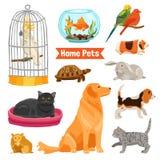 Animales domésticos caseros fijados Imagen de archivo