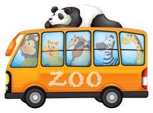 Animales en el autobús Foto de archivo libre de regalías