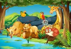 Animales en el bosque ilustración del vector