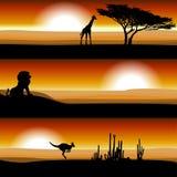 Animales en la sabana en la puesta del sol ilustración del vector