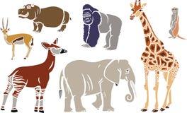 Animales exóticos fijados Fotos de archivo