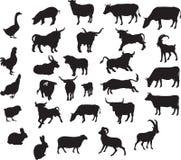 Animales fijados ilustración del vector