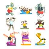 Animales lindos que llevan el uniforme que hace ejercicios usando sistema del equipo de deportes, caracteres animales juguetones, stock de ilustración