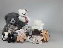 Animales rellenos Fotos de archivo libres de regalías
