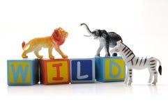 Animales salvajes Imágenes de archivo libres de regalías