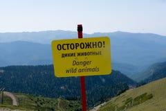 Animales salvajes del peligro Imagenes de archivo