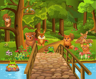 Animales salvajes en el bosque y un puente en el primero plano Imagenes de archivo