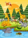 Animales salvajes en la puesta del sol libre illustration