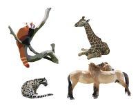 Animales salvajes II Imagen de archivo