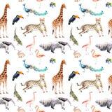 Animales salvajes y pájaros - parque zoológico, fauna - jirafa, guepardo, tucán, flamenco, otro Modelo inconsútil watercolor stock de ilustración
