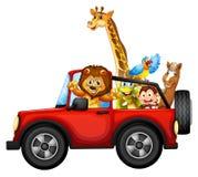 Animales y coche Fotografía de archivo