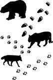 Animales y pistas ilustración del vector