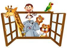 Animales y ventana ilustración del vector